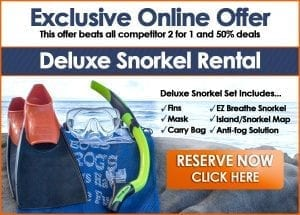 EZ Breathe Snorkel Rental