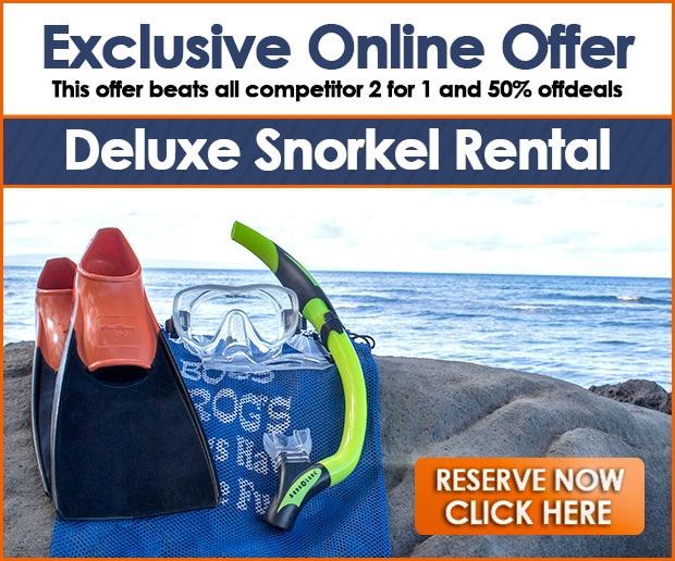 Maui, Kauai & Hawaii Snorkel Rentals