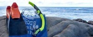 Boss Frog's Bike, Beach and Surf Rentals