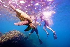 Kauai Snorkeling