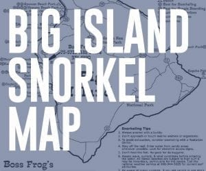 Big Island Snorkel Map - Download