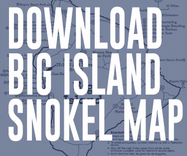 Download Big Island Snorkel Map