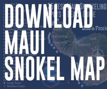 Download Maui Snorkel Map