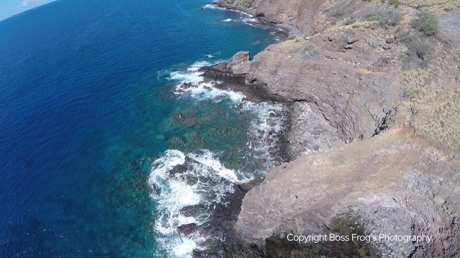 Coral Gardens Maui Snorkeling