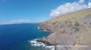 Coral Gardens Maui Snorkeling Tour