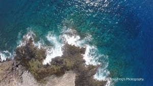Coral Gardens Maui