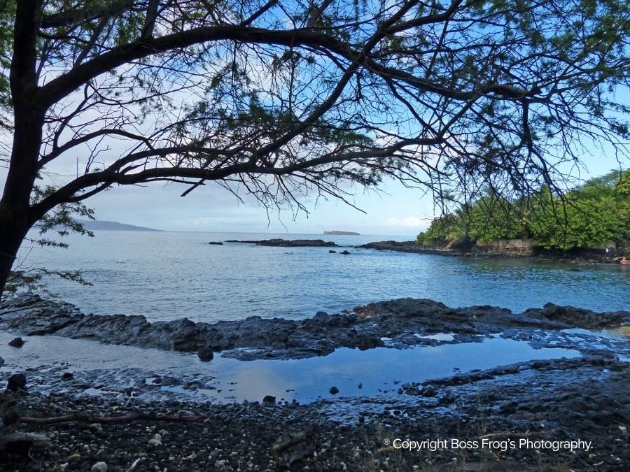Ahihi-Kinau-Maui_1