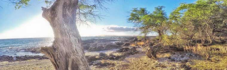 La-Perouse-Bay-Maui-Hawaii