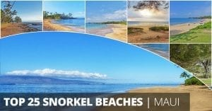 Maui Snorkeling Beach Map facebook share
