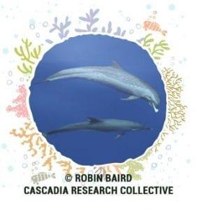 © Robin Baird Cascadia Research Collective