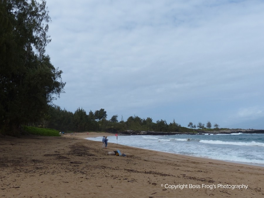 DT-Fleming-Beach-Maui