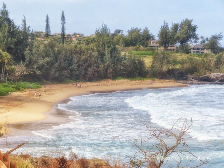 Maui Beach Guide - DT Fleming Beach
