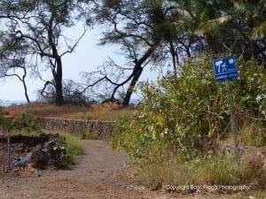 Five Caves Maui Hawaii - path