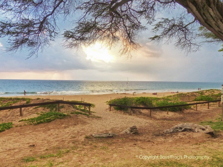 Maui Beach Guide - Kamaole Beach Parks