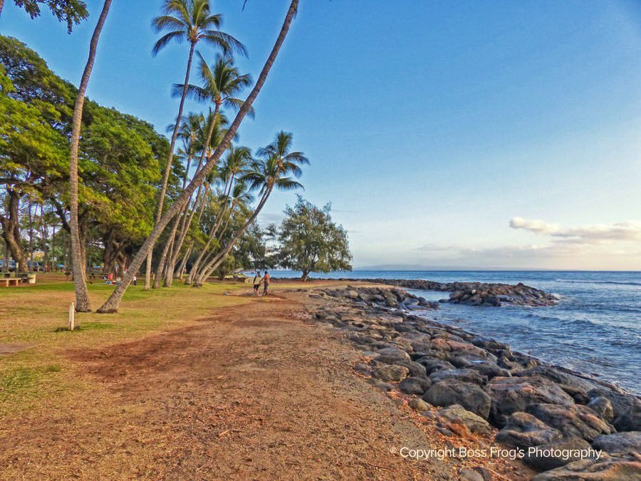 Maui Beach Guide - Launiupoko Beach Park