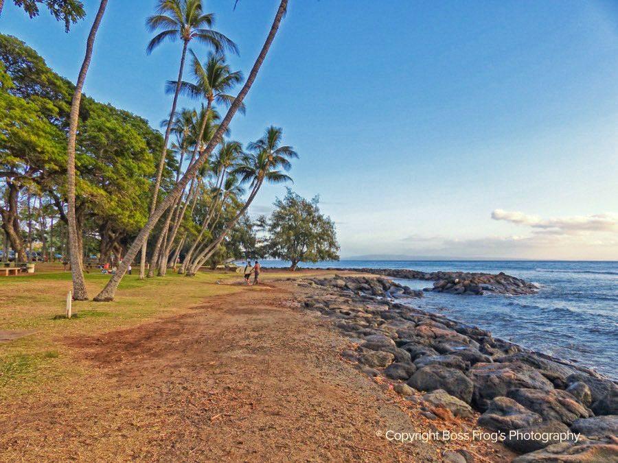 Maui Beach Guide - Launiupoko Beach Park