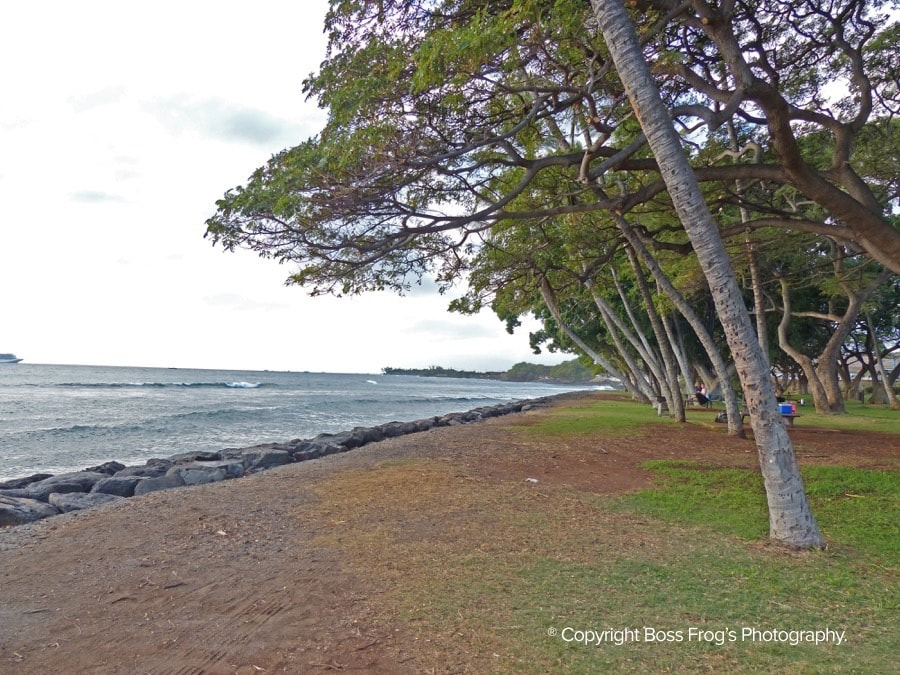 Launiupoko-Beach-Park-Maui-Hawaii_2
