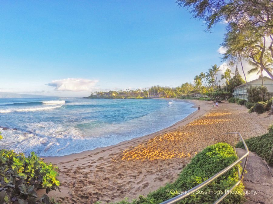 Maui Beach Guide - Napili Bay