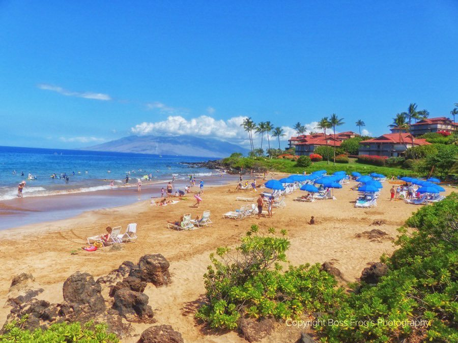 Maui Beach Guide - Polo Beach