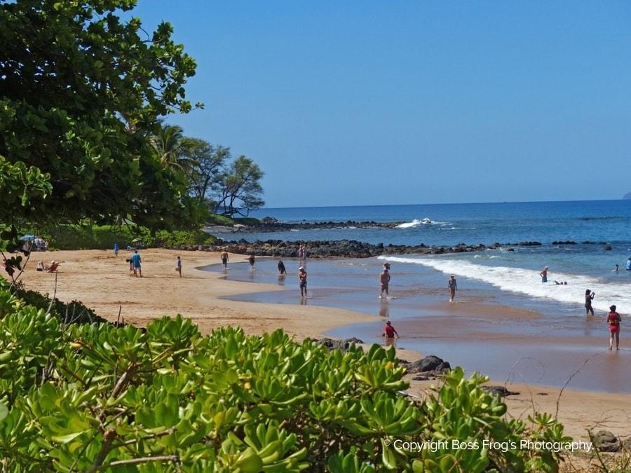 Polo Beach Maui Hawaii 4 Boss Frog S