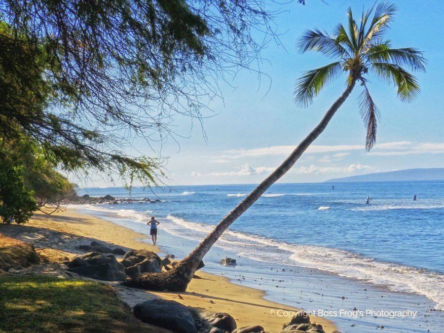 Maui Beach Guide - Puamana Beach Park