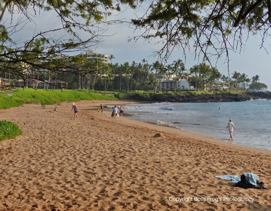 Ulua-Mokapu-Beaches-Maui-Hawaii