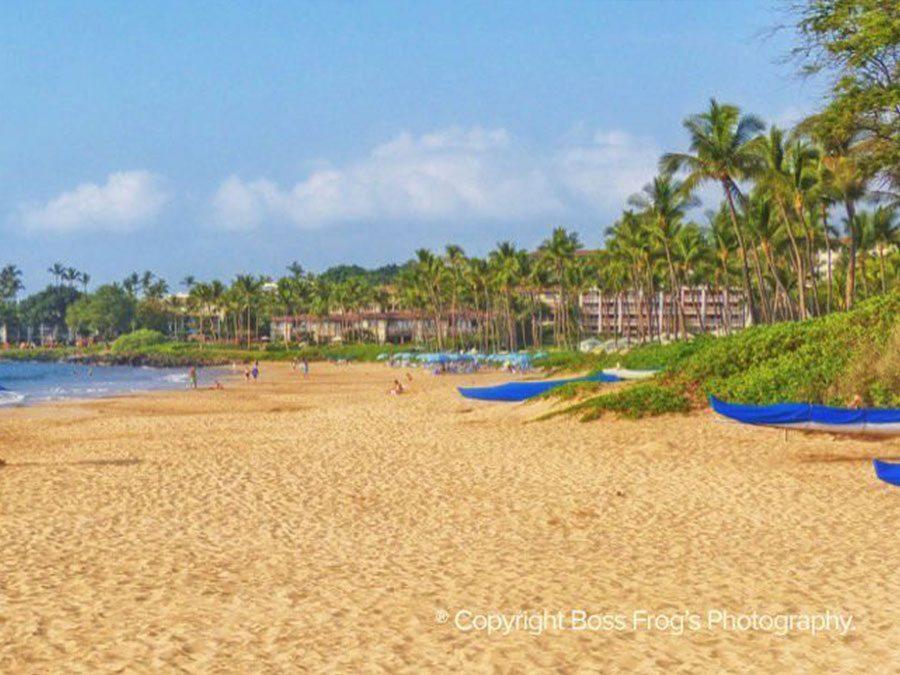 Maui Beach Guide - Wailea Beach
