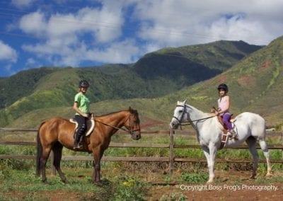 lahaina_stables_maui_4