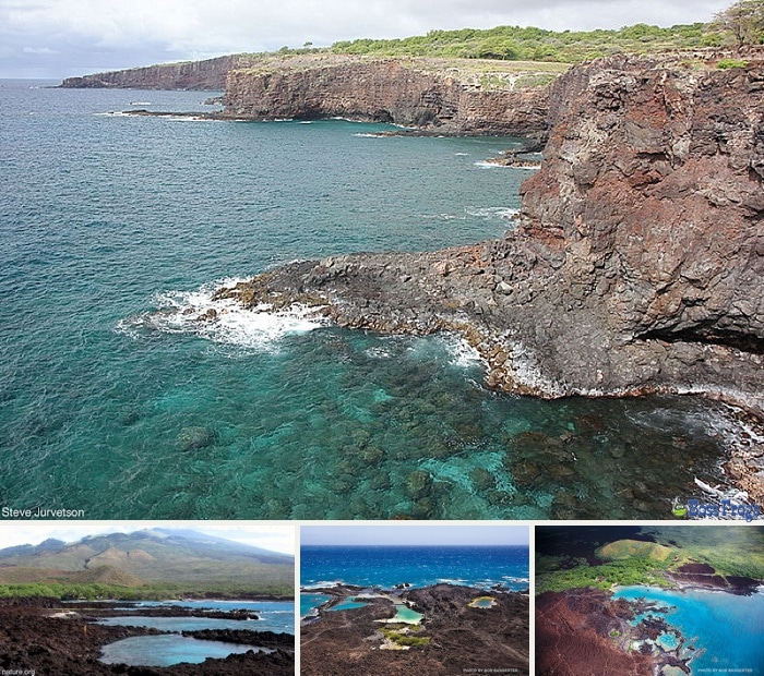 How To Get To Ahihi Kinau Natural Area Reserve