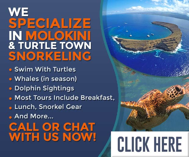 Maui Snorkeling at Molokini aboard the Malolo
