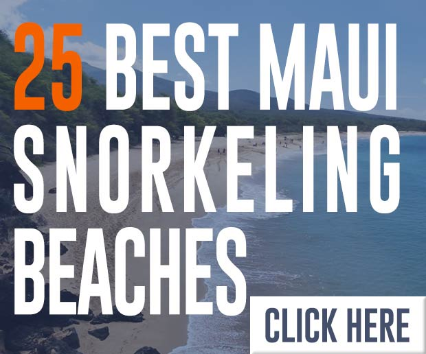 25 best maui snorkeling beaches