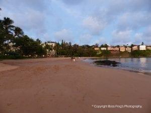 Kalapaki Beach   Kauai Beaches