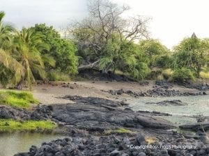 Honokokau Beach | Kona Big Island