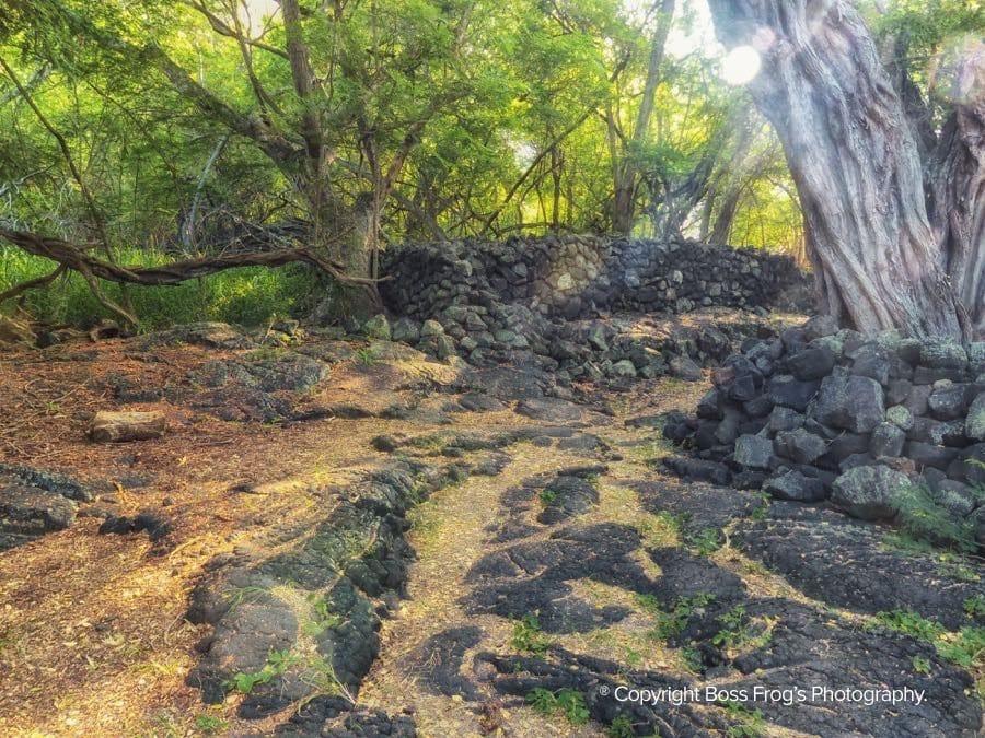 Kealakekua Bay & Captain Cook Monument