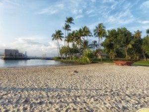 King Kamehameha Beach