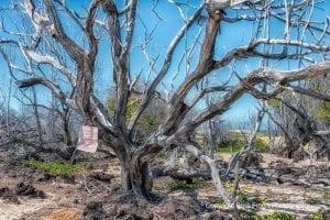 Makalawena Beach Kekaha Kai State Park | Big Island