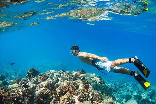 Snorkel Cruise Maui