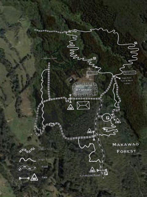 Makawao Forest Reserve Bike Trail