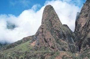 Iao Valley / Needle Boss Frog's Maui
