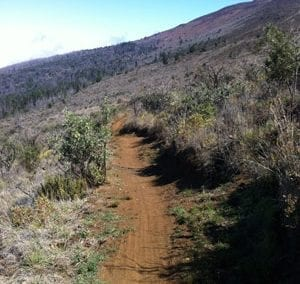 Skyline Mountain Bike Trail.