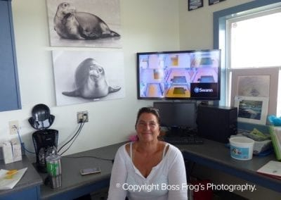 Top to Bottom - Photo of Hawaiian Monk Seal Pua Ena O Ke Kai, Photo of Hawaiian Monk Seal Meleana, and Volunteer Claire Trester.  The hospital's real-time seal surveillance monitor is behind, on the desk.