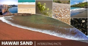 Hawaiian Sand Types and where it comes from