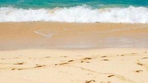 white sand in Maui