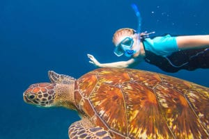 Electric Bike Rentals & Tours Snorkeling Tour