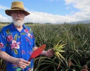 Hawaiian_Pineapples_Learn
