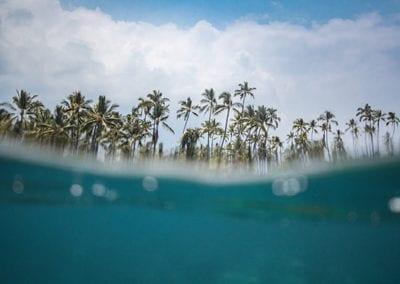 ReefSafe_Hawaii