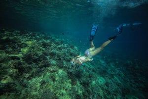 ReefSafe_Snorkel