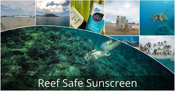 ReefSafe_Blog