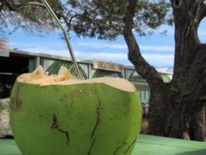 Healthy_Hawaii_Coconut