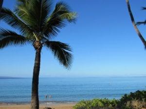 Healthy_Hawaii_Morning